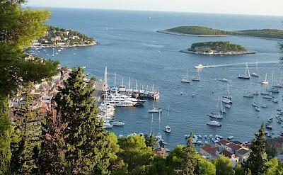 The harbor in Hvar, Croatia. Photo by Hubert Schledt