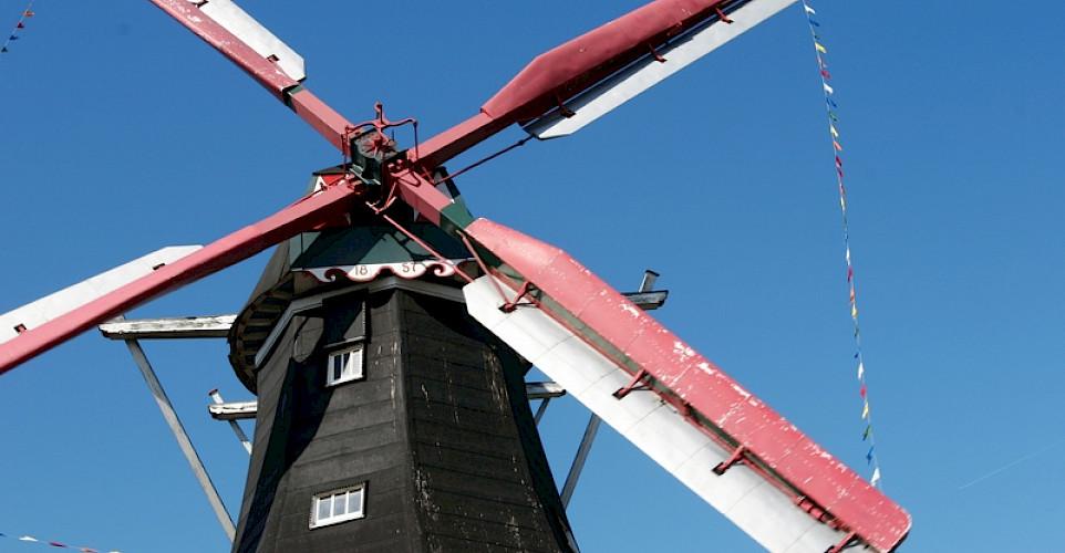 Windmills aplenty in Drenthe, Holland. Photo courtesy of Netherlands Board of Tourism