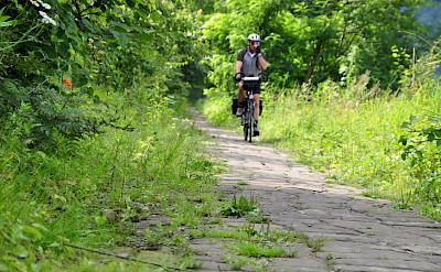 Cycling in Bad Schandau, Germany. Flickr:AdfcSachsen