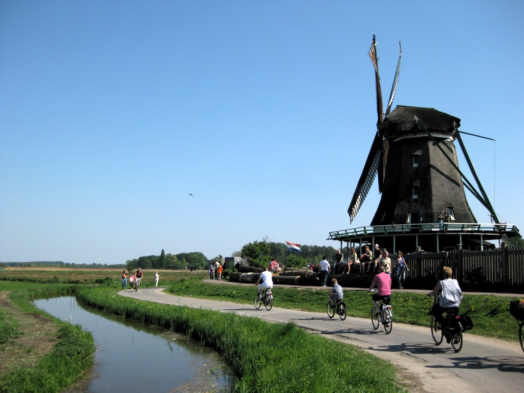 Dutch Highlights Tulip Bike Tour Netherlands Tripsite