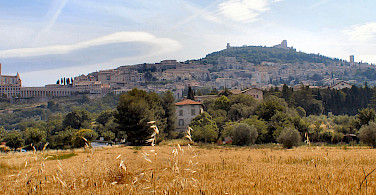 Baslica di San Francesco and others in Assisi, Umbria, Italy. Photo via Wikimedia Commons:Gunnar Bach Pedersen