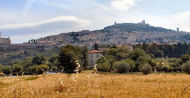 Baslica di San Francesco and others in Assisi, Umbria, Italy. Photo via Wikimedia Commons:Gunnar Bach Pedersen
