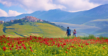 Umbria's lush landscape makes for a great bike tour in Italy. Photo via Flickr:Moyan Brenn