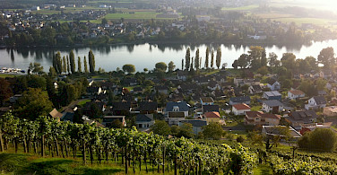 Vineyards surrounding Stein am Rhein, Switzerland. Photo via Flickr:Marc van der Chijs