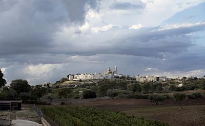 Locorotondo exemplifies Puglia's characteristic white architecture. Flickr:Biggs