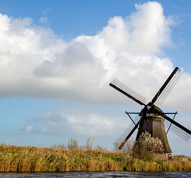 Holland in a Nutshell - a Tulip Tour
