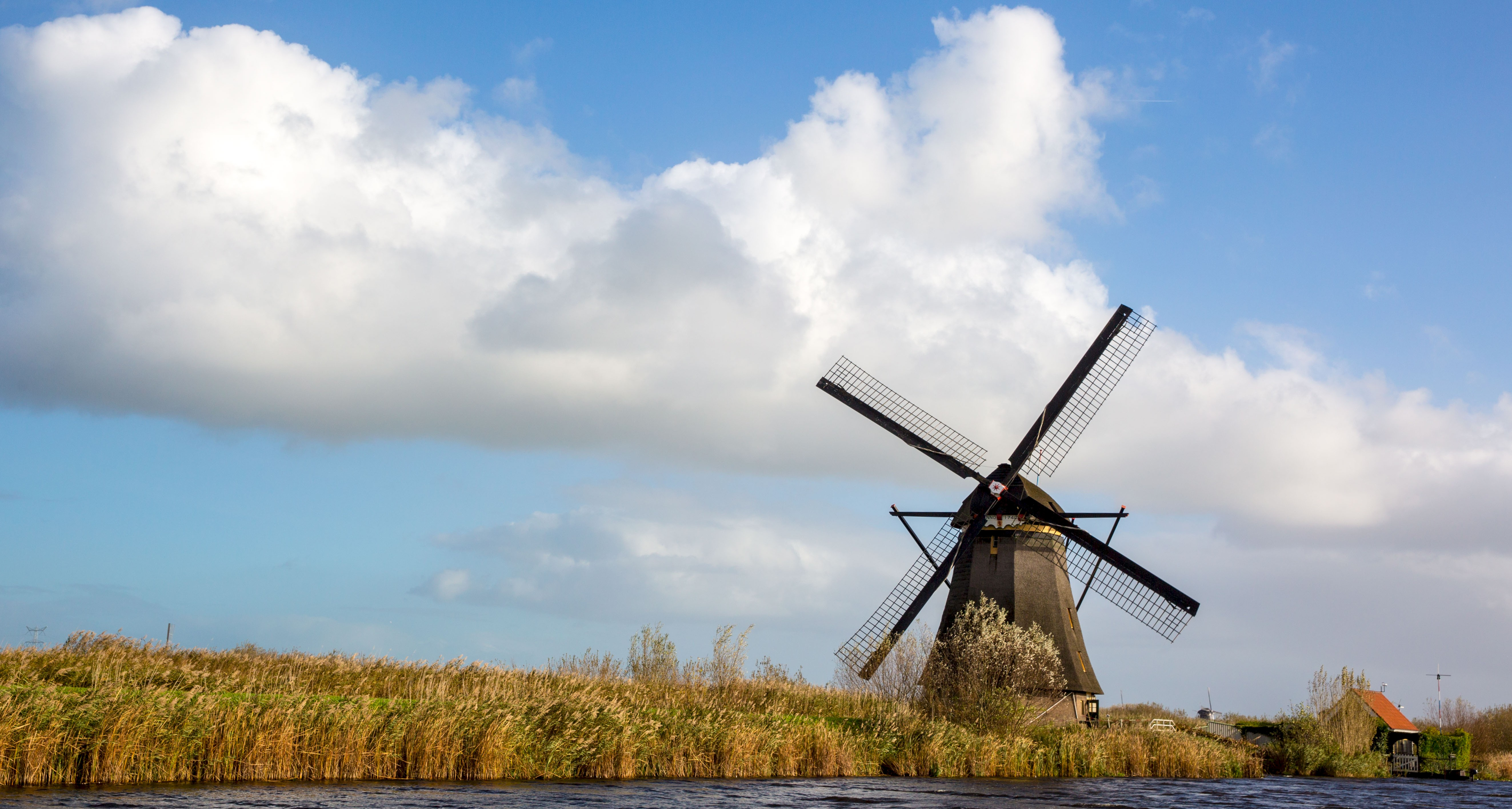 Holland in a Nutshell - a Tulip Bike Tour - Netherlands