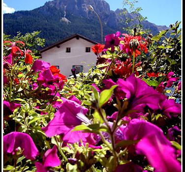 Bolzano. Photo via Flickr:elgarydaly