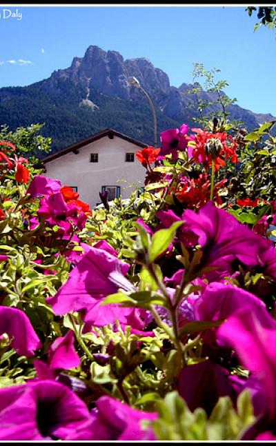 Bolzano, Italy. Photo via Flickr:elgarydaly