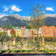 Innsbruck to Bolzano Photo