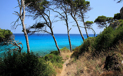 Cycling along Mallorca's coastline. Flickr:Franz59