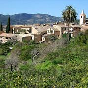 Mallorca Photo