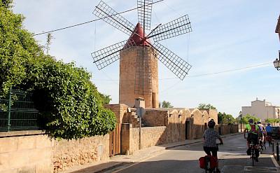Bikers admiring the windmill in Mallorca. Photo courtesy of Tour Operator.
