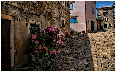 Street in Groznjan, Istria. Photo via Flickr:Mario Fajt