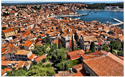 Harbor as seen from Campanile of Saint Euphemia Church in Rovinj, Istria, Croatia. Photo via Flickr:Mario Fajt