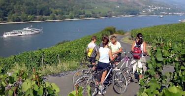 cycle along the Rhine River Valley