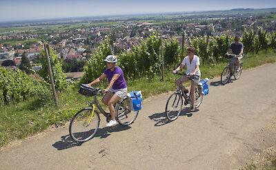 Biking Mainz, Germany. ©TO