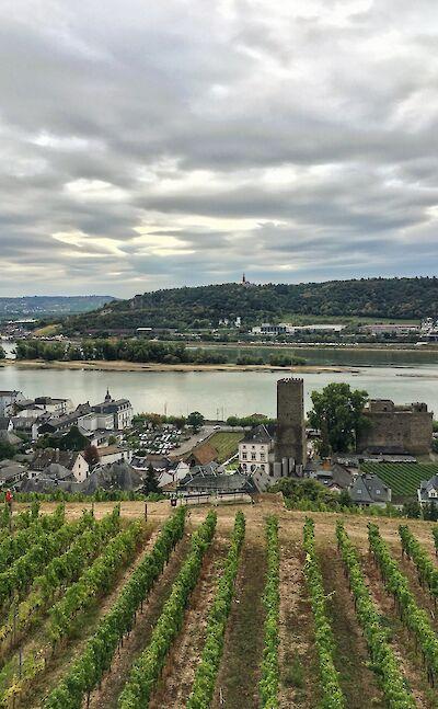 Rüdesheim am Rhein, Germany. Flickr:Martin Fisch