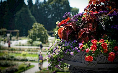 Island of Mainau on Lake Constance. Flickr:Judy Dean