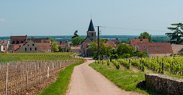 Cycle the Loire Valley in Burgundy. Photo via Flickr:Michal Osmenda