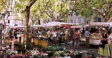 France flower market. Photo via Flickr:Peter Curbishley