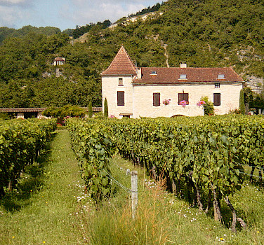 See many chateau amongst vineyards as you cycle France. Photo via Wikimedia Commons:John