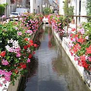 Beaugency, France. Photo courtesy TO