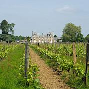 Vale do Loire - Angers a Le Croisic Foto