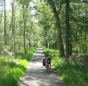 Cycling in Lunteren in Gelderland, the Netherlands. Photo by Hennie.