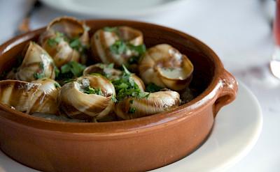 Escargot de Bourgogne, France. Flickr:Oliver Dodd