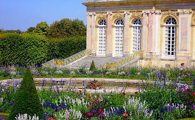 Palace Versailles & Gardens. Flickr:Rolland Pomaret