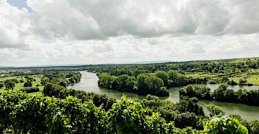 Vineyards in Volkach, Bavaria, Germany. Photo via Flickr:Markus Spiske