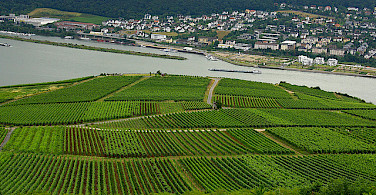 Bingen, Germany. Photo via Flickr:dave-f