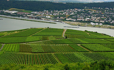 Bingen, Germany. Photo via Flickr:dave-f