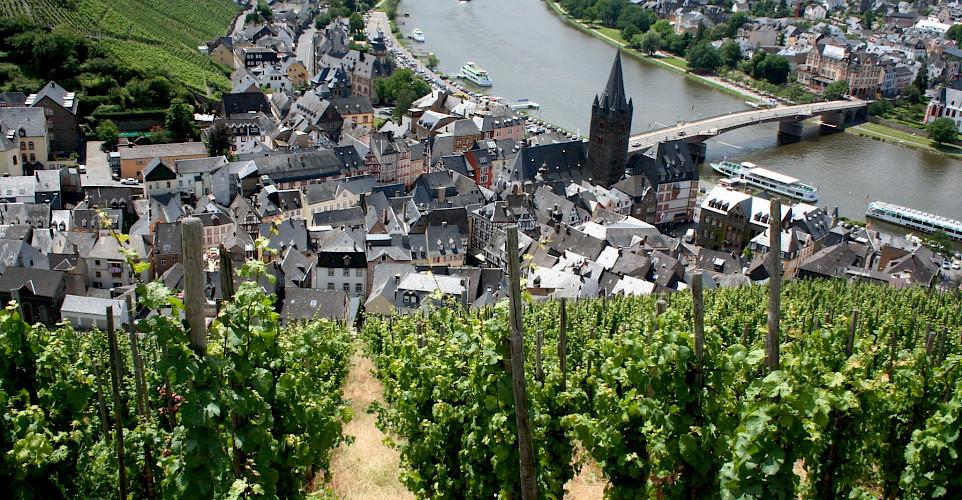 Mosel River Valley vineyards by Bernkastel-Kues, Germany. Flickr:Megan Mallen