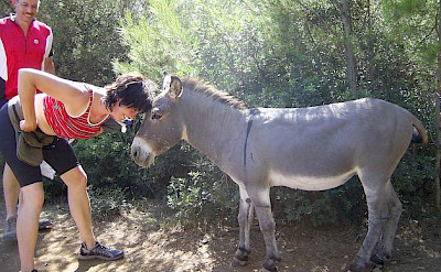 Saying hello to the locals in Dalmatia. Photo by Isabelle Nyffenegger