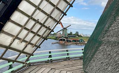 Windmills at the Zaanse Schans in the Netherlands.