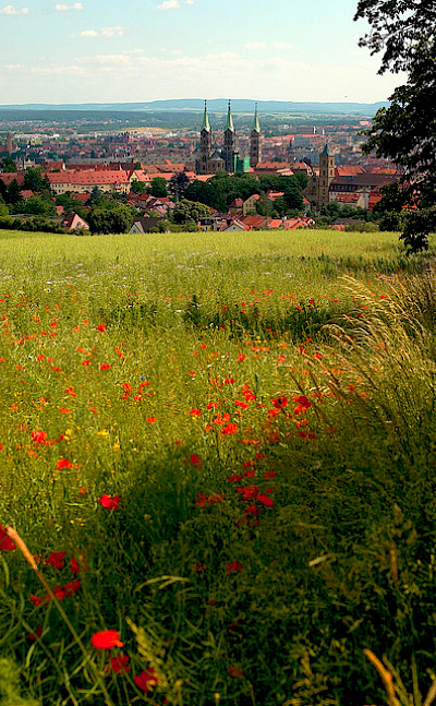 Summertime in Bamberg, Germany. Flickr:Thomas Depenbusch