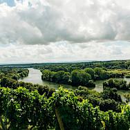 Vineyards and green valleys around Volkach, Germany. Flickr:Mark Usspiske