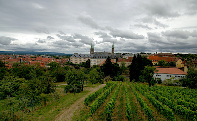 Vineyards in Würzburg, Bavaria, Germany. Flickr:Jin Palsong