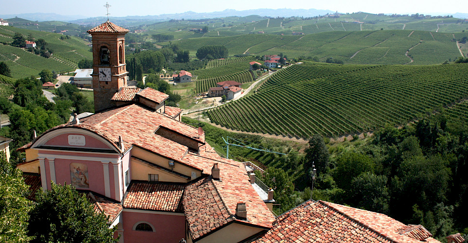 View from the wine museum in Barolo, Piedmont, Italy. Photo via Flickr:Megan Cole