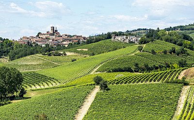 Biking the Monferrato region in the Piedmont of Italy. ©Photo via TO