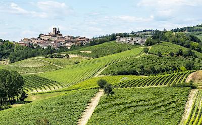 Biking the Monferrato region in the Piedmont of Italy. ©Photo via TO