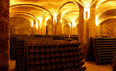 Wine cellars to visit in the Piedmont region of Italy. ©Photo via TO