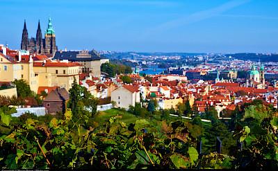 Prague on the Vltava River, Czech Republic. Flickr:Moyan Brenn
