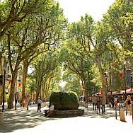 Biking through Aix-en-Provence, France. Flickr:Andrea Schaffer