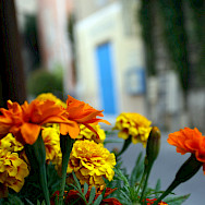 Fontaine-de-Vaucluse, France. Flickr:Alessandro Prada