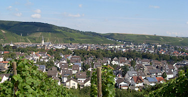 Wine-growing region of Ahrweiler, Germany. Flickr:a froese