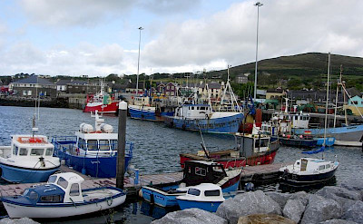 Dingle harbor on the Peninsula, Co. Kerry, Ireland. Flickr:Gabriela Avram