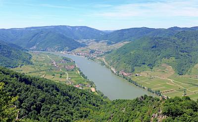Danube River in Wachau wine-growing region, Austria. Wikimedia Commons:bwag